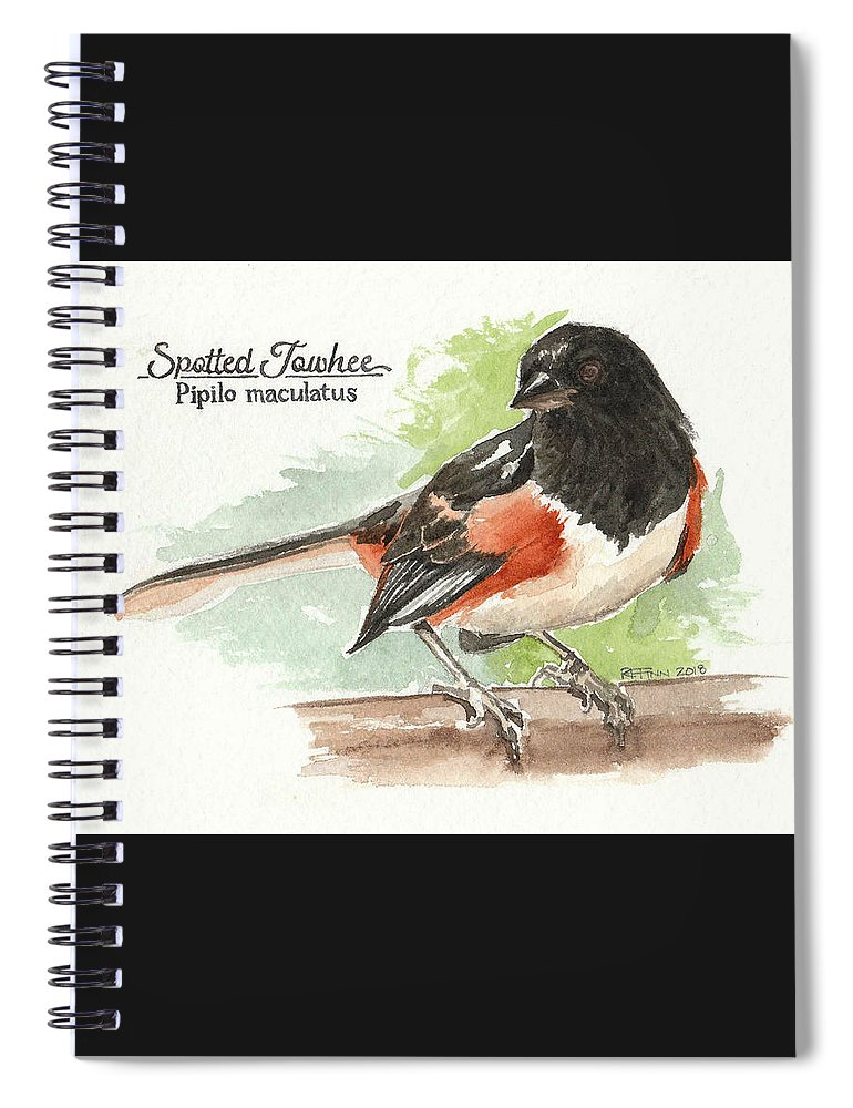 Birds Spiral Notebook featuring the painting Spotted Towhee by Rowena Finn