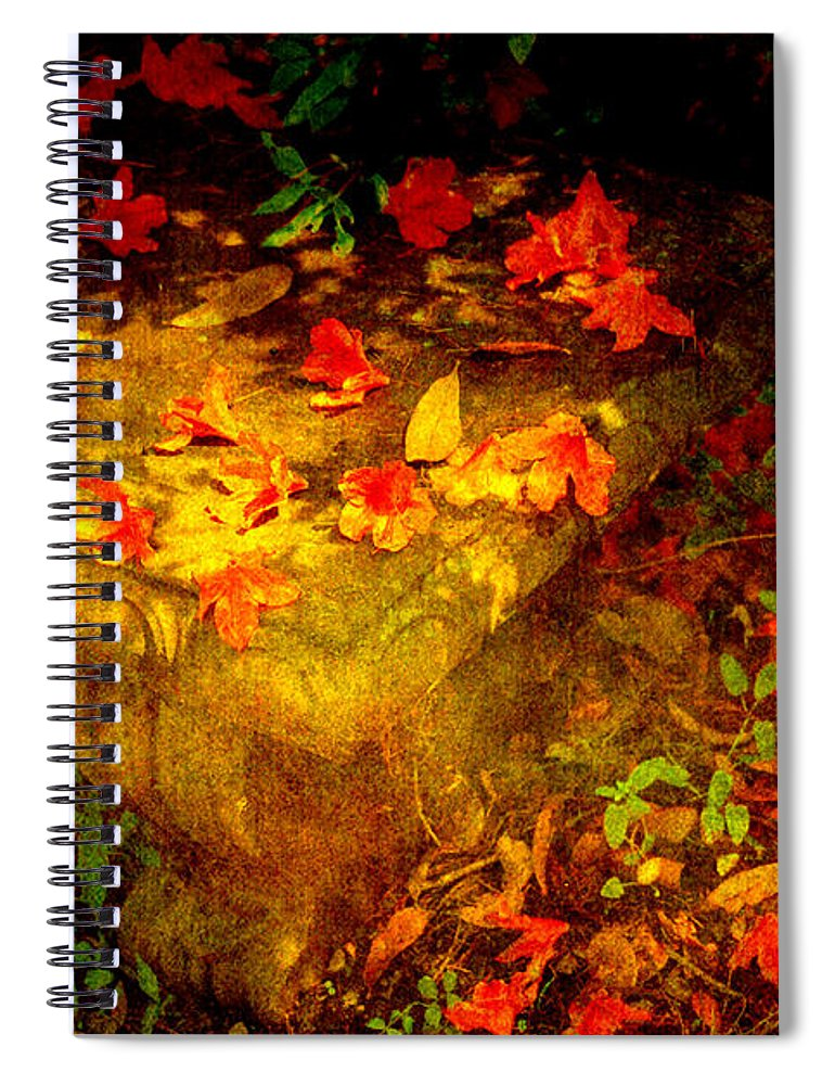 Flower Spiral Notebook featuring the photograph Spring Or Autumn by Susanne Van Hulst