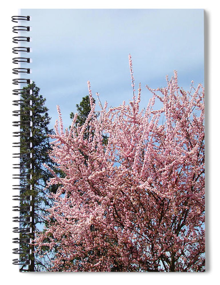 Trees Spiral Notebook featuring the photograph Spring Trees Bossoming Landscape Art Prints Pink Blossoms Clouds Sky by Baslee Troutman