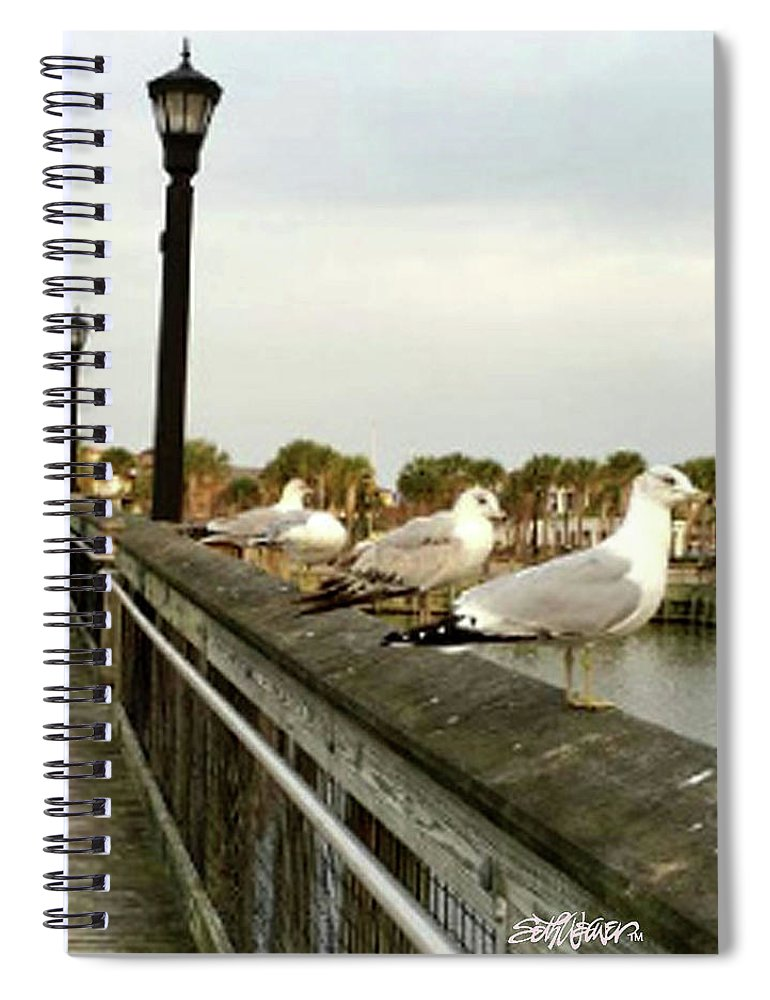 Storm Watch Spiral Notebook featuring the photograph Storm Watch by Seth Weaver