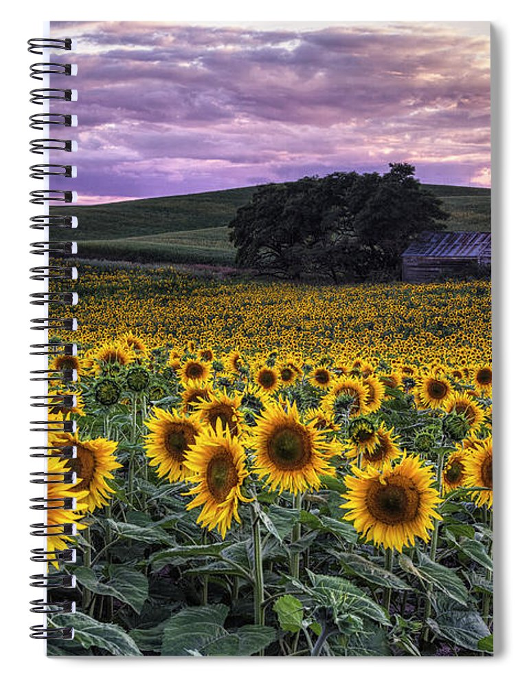 Sunflowers Spiral Notebook featuring the photograph Summertime Sunflowers by Mark Kiver