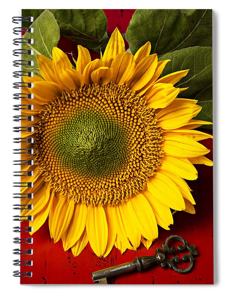 Sunflower Spiral Notebook featuring the photograph Sunflower With Old Key by Garry Gay
