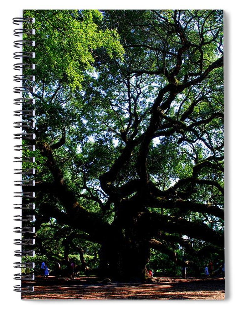 Angel Oak Spiral Notebook featuring the photograph The Angel Oak in Summer by Susanne Van Hulst