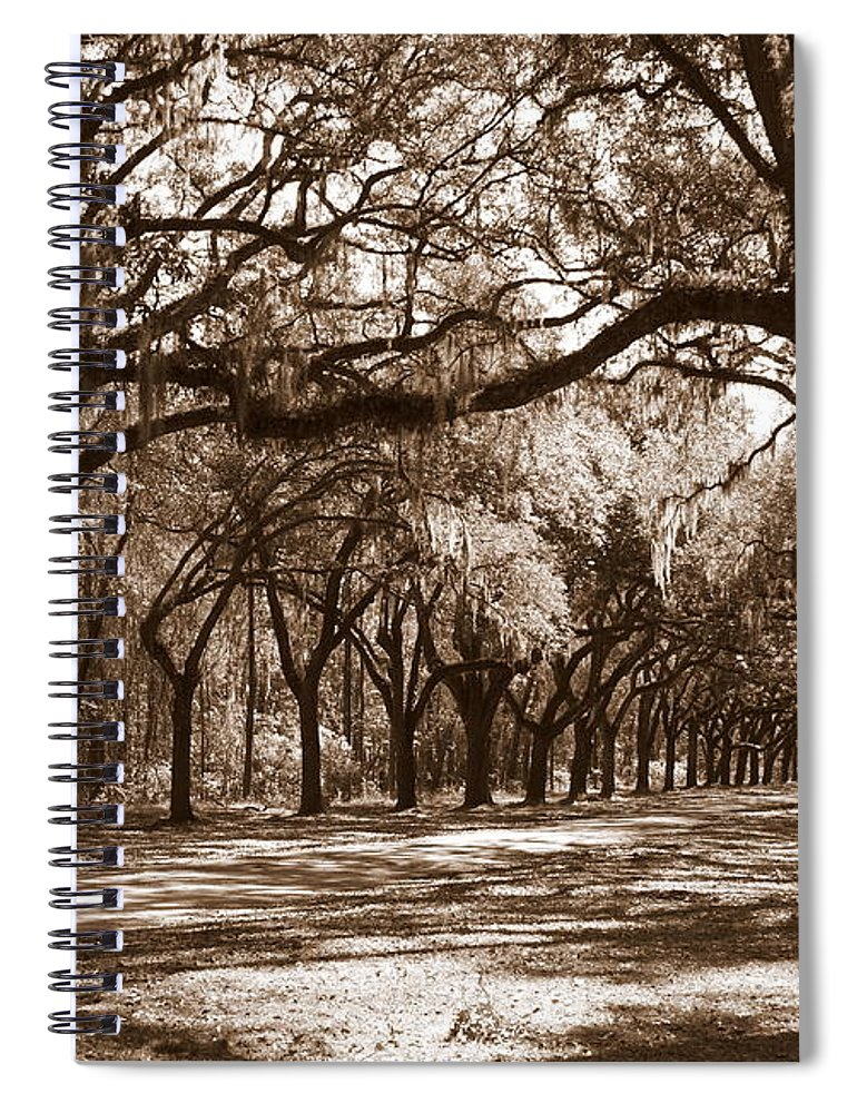 Live Oaks Spiral Notebook featuring the photograph The Dance - Sepia by Carol Groenen