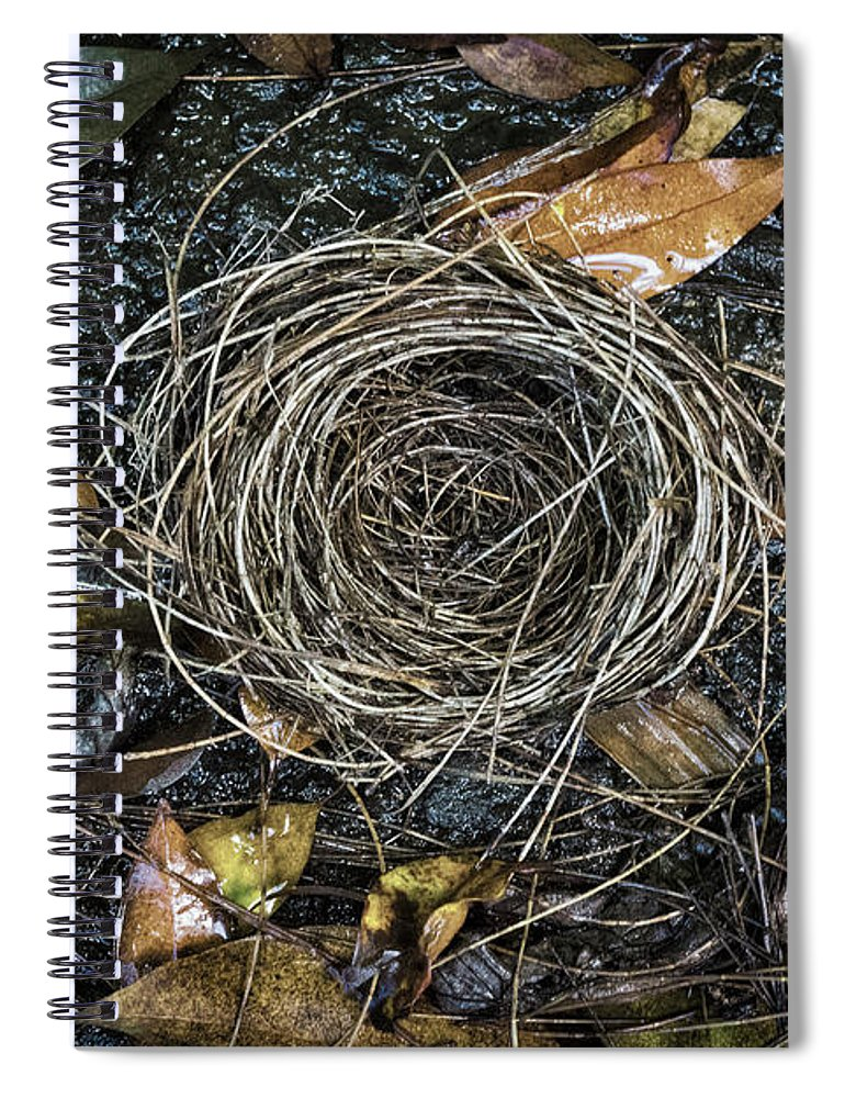The Empty Nest Spiral Notebook featuring the photograph The Empty Nest by Mitch Shindelbower