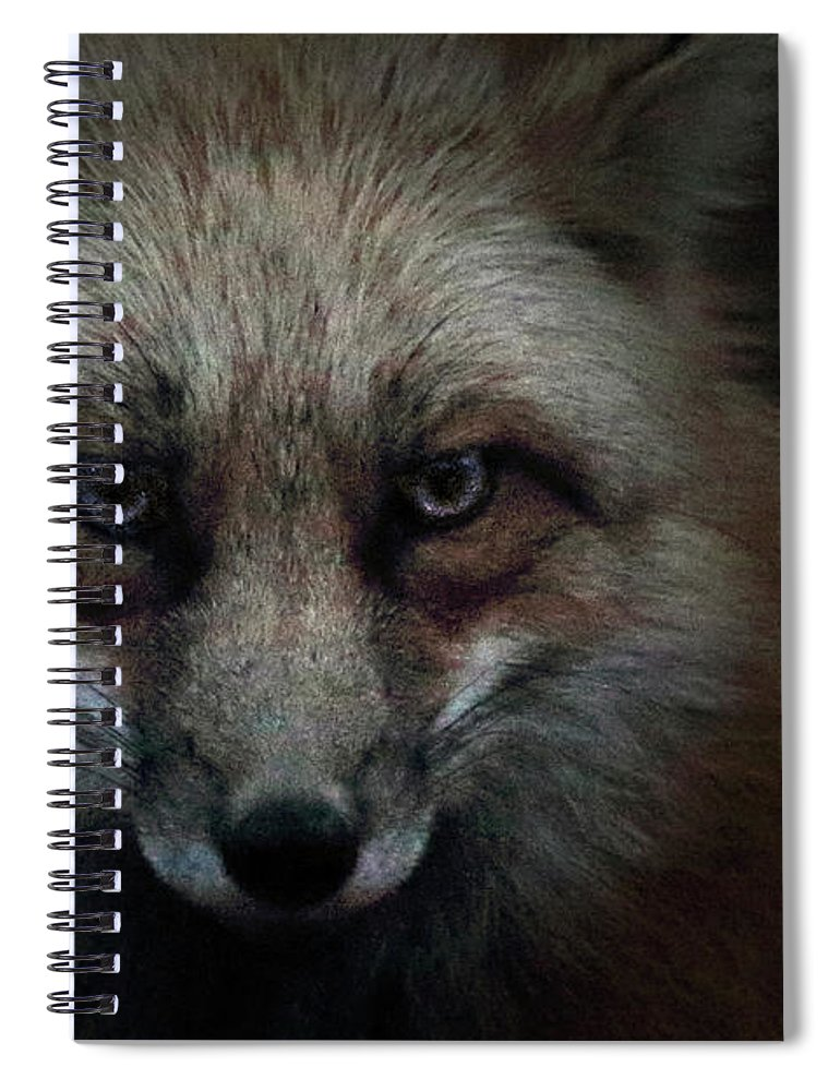 In Spiral Notebook featuring the photograph In The Dark Of The Night by Brian Gustafson