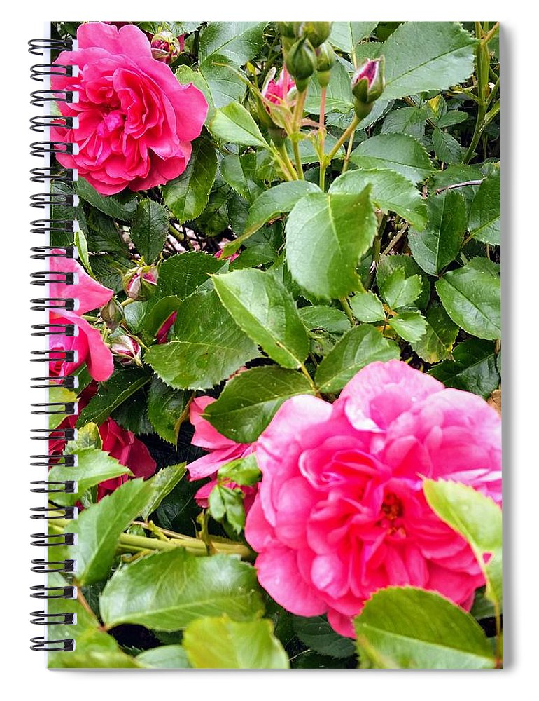 Botanical Flower's Nature Spiral Notebook featuring the photograph The peaceful place 10 by Valerie Josi