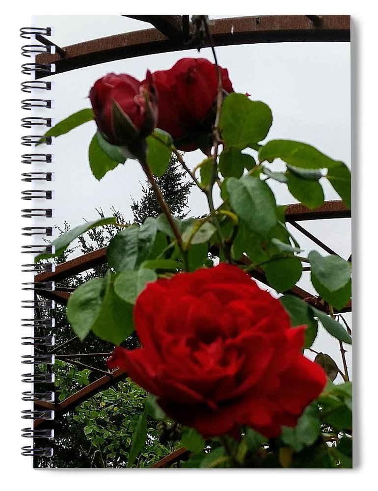 Botanical Flower's Nature Spiral Notebook featuring the photograph The peaceful place 7 by Valerie Josi