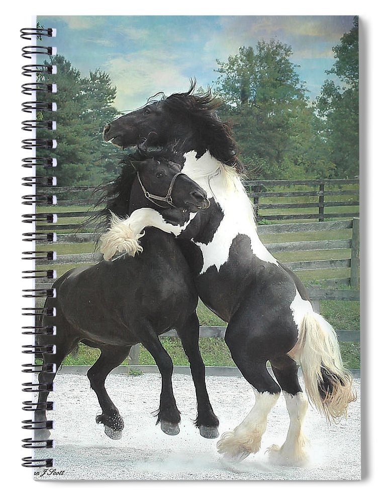 Horses Spiral Notebook featuring the photograph The Posturing Game by Fran J Scott
