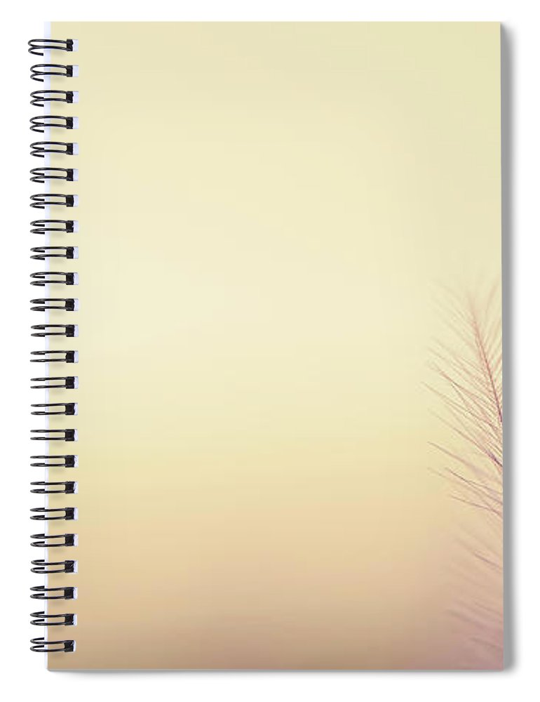 Delicate Spiral Notebook featuring the photograph The Questions Worth Asking by Scott Norris