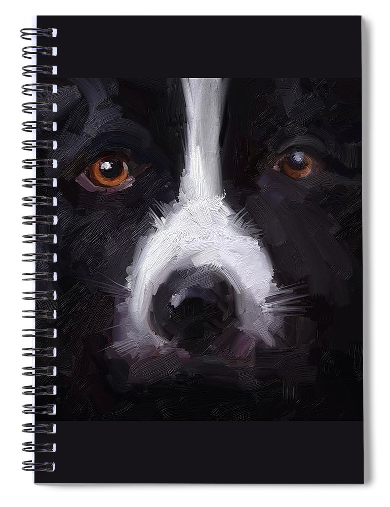 Border Collie Dog Sheepdog Stare Spiral Notebook featuring the digital art The Stare by Scott Waters