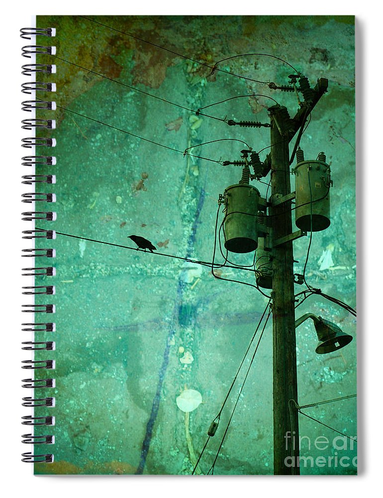 Urban Spiral Notebook featuring the photograph The Urban Crow by Tara Turner