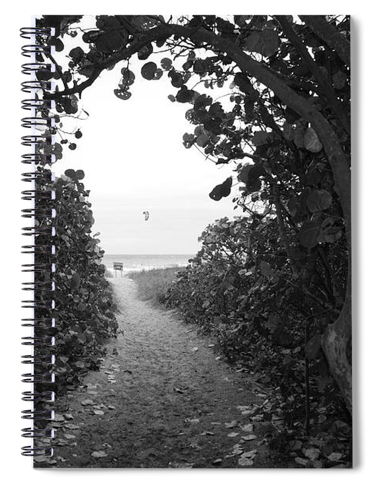 Black And White Spiral Notebook featuring the photograph Through The Looking Glass by Rob Hans