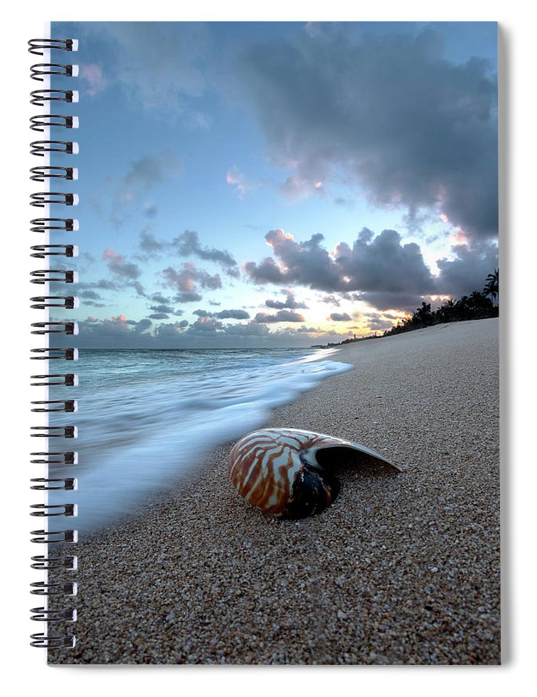 Seashell Spiral Notebook featuring the photograph Tiger Nautilus Foam by Sean Davey