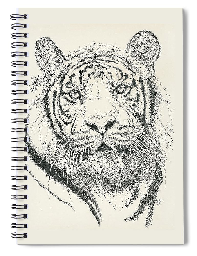 Tiger Spiral Notebook featuring the drawing Tigerlily by Barbara Keith