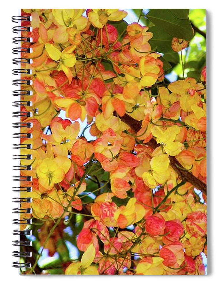 Tree Spiral Notebook featuring the photograph Trees And Flowers In Hawaii by D Davila