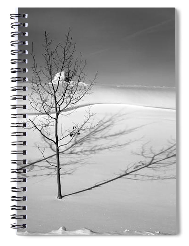 Nature Spiral Notebook featuring the photograph Twins by Skip Hunt