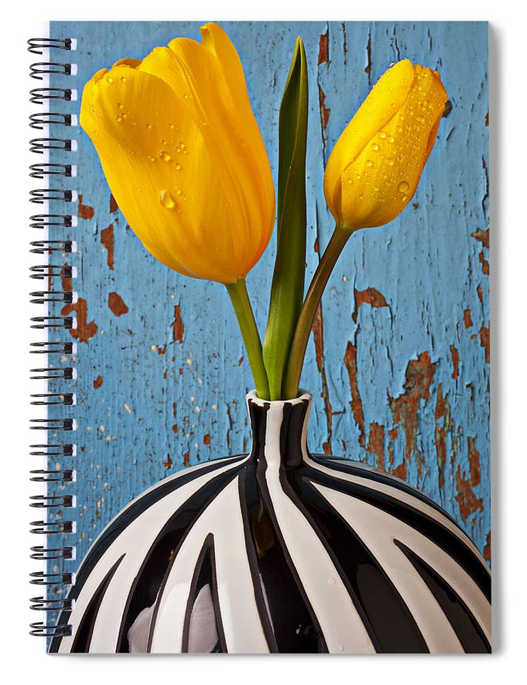 Two Yellow Spiral Notebook featuring the photograph Two Yellow Tulips by Garry Gay