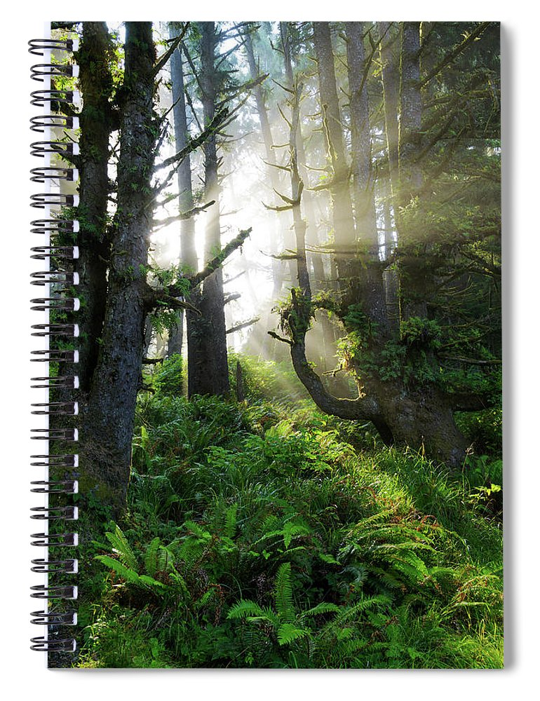 Vision Spiral Notebook featuring the photograph Vision by Chad Dutson