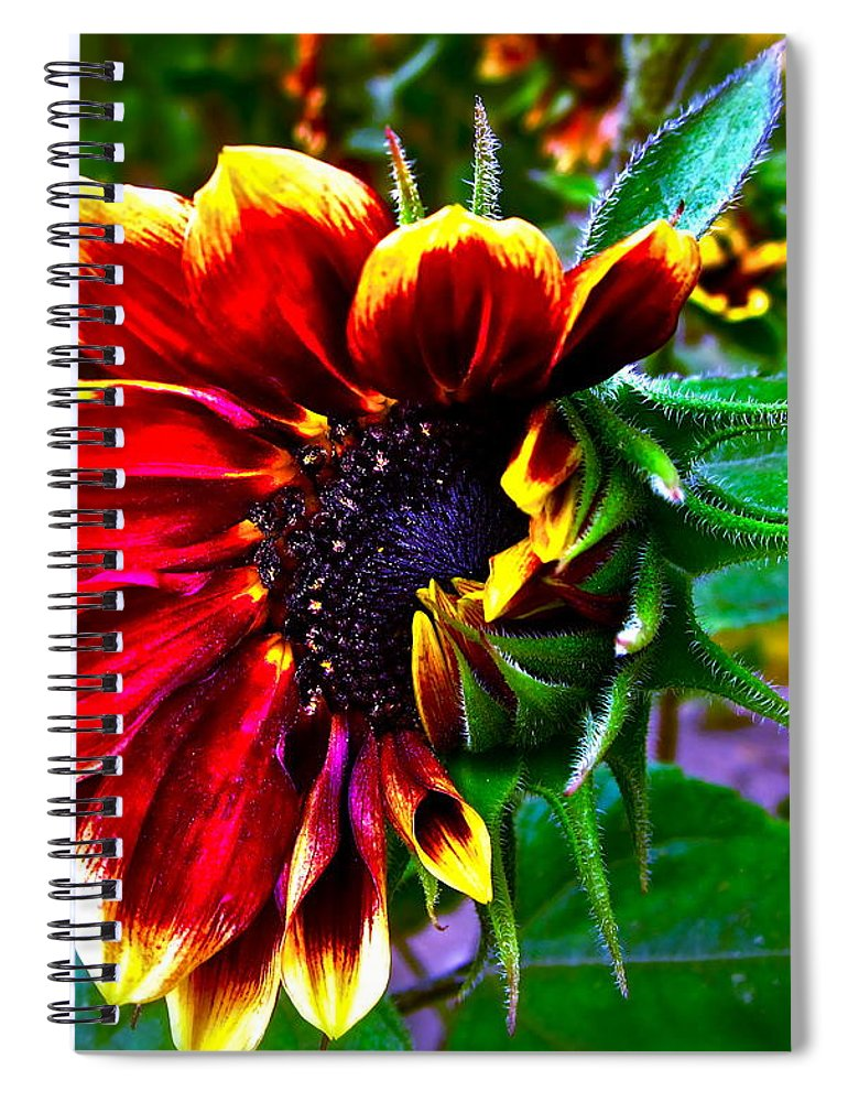 Sunflower Spiral Notebook featuring the photograph Waking Up by Gwyn Newcombe