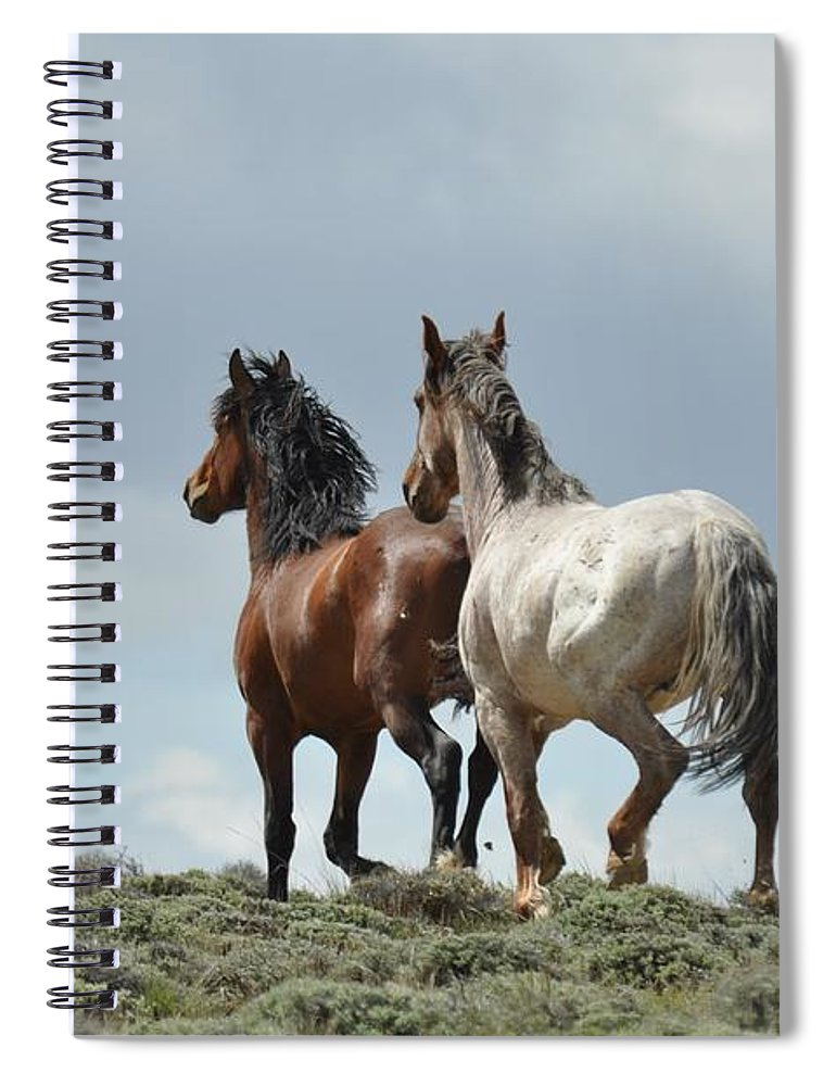 Wild Horses Spiral Notebook featuring the photograph We Will Be Over the Hill in a Few Seconds by Frank Madia