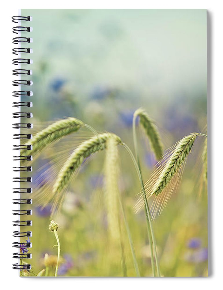 Wheat Spiral Notebook featuring the photograph Wheat And Corn Flowers by Nailia Schwarz