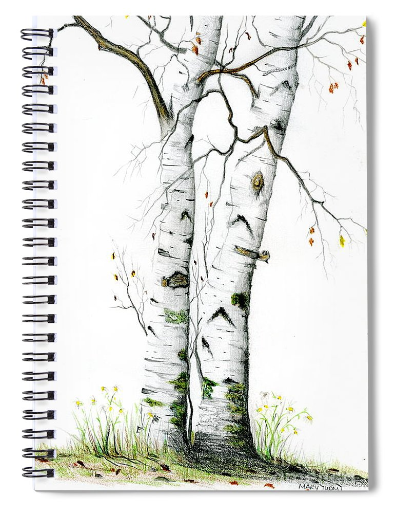 White Birch Spiral Notebook featuring the painting White Birch by Mary Tuomi