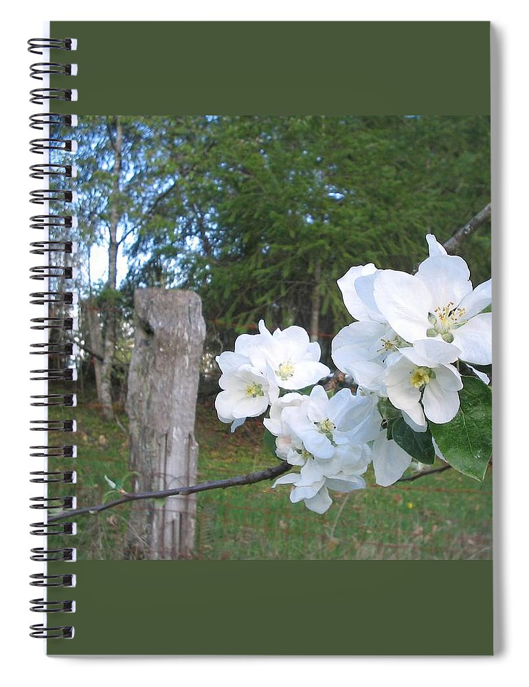 Flowers Spiral Notebook featuring the photograph White Flowers by Valerie Josi