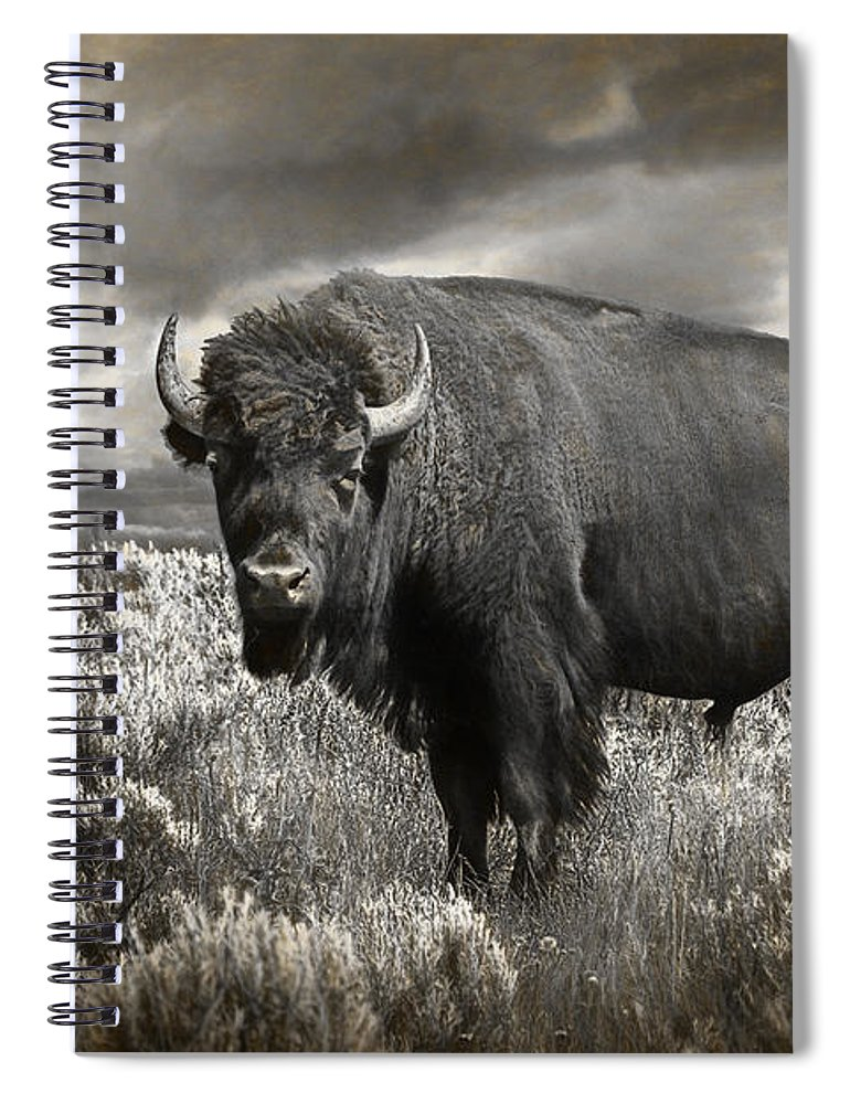 Bison Spiral Notebook featuring the photograph Wild Buffalo In Yellowstone by Randall Nyhof
