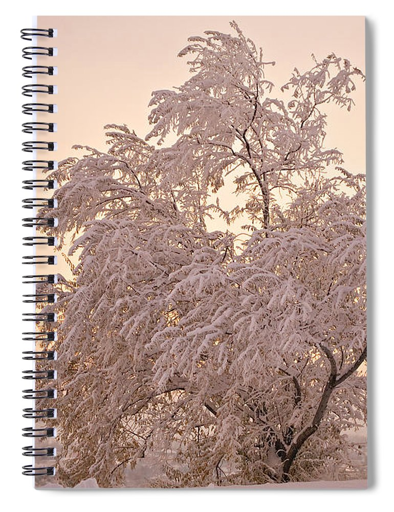 Winter Spiral Notebook featuring the photograph Winter Sunset by Marilyn Hunt