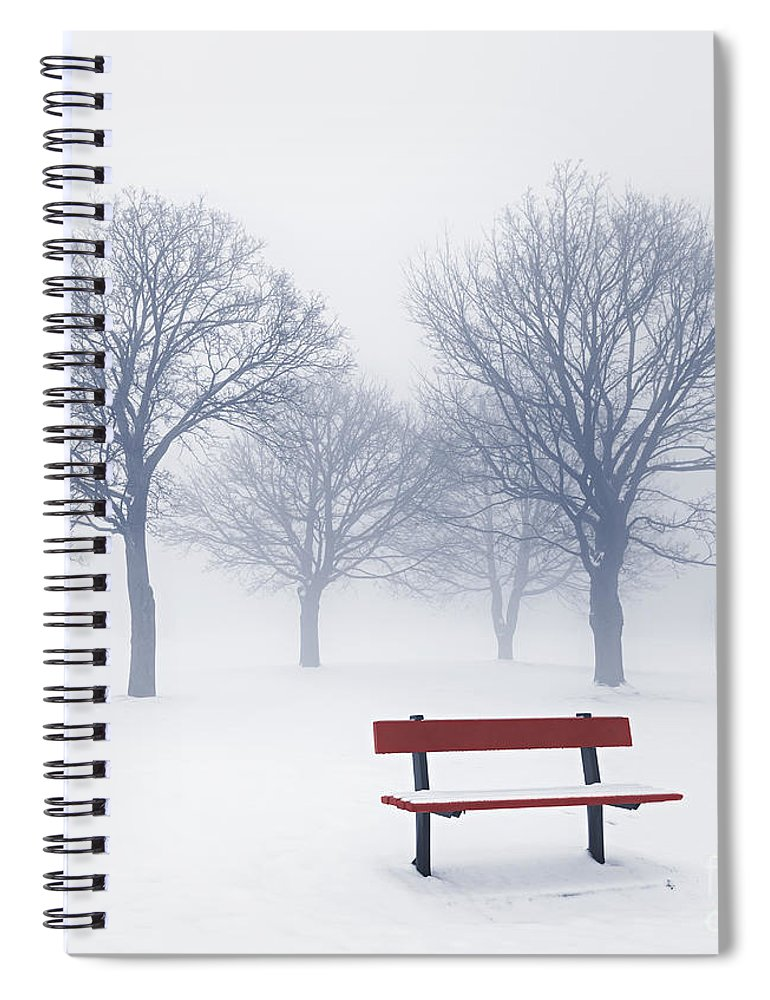 Trees Spiral Notebook featuring the photograph Winter Trees And Bench In Fog by Elena Elisseeva