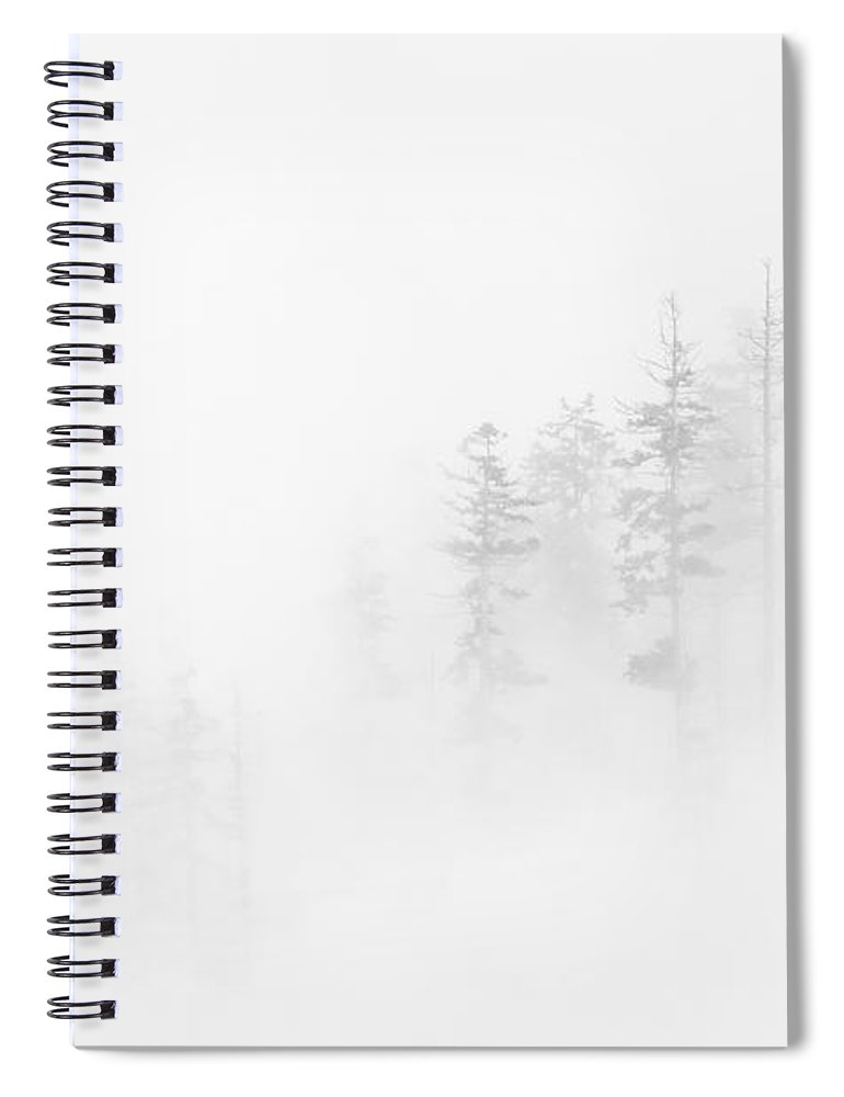 Winter Spiral Notebook featuring the photograph Winter Veil by Mike Dawson