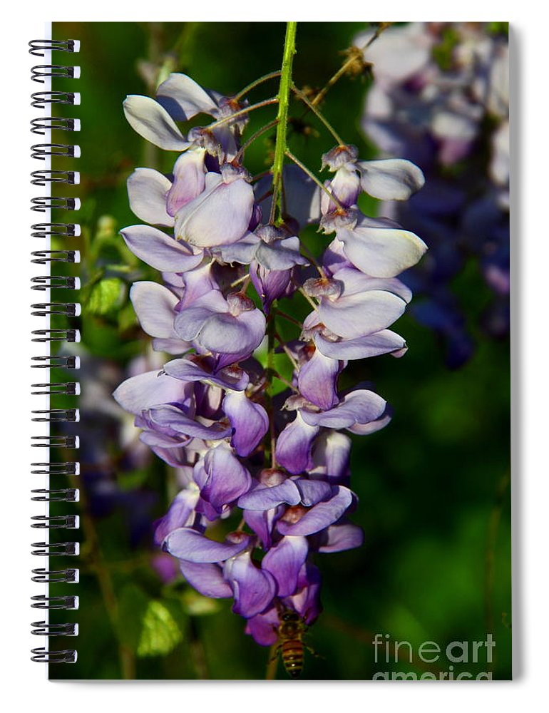Wisteria Spiral Notebook featuring the photograph Wisteria Bloom by Barbara Bowen