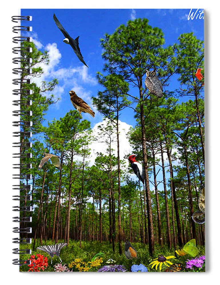 Withlacoochee State Forest Spiral Notebook featuring the photograph Withlacoochee State Forest Nature Collage by Barbara Bowen