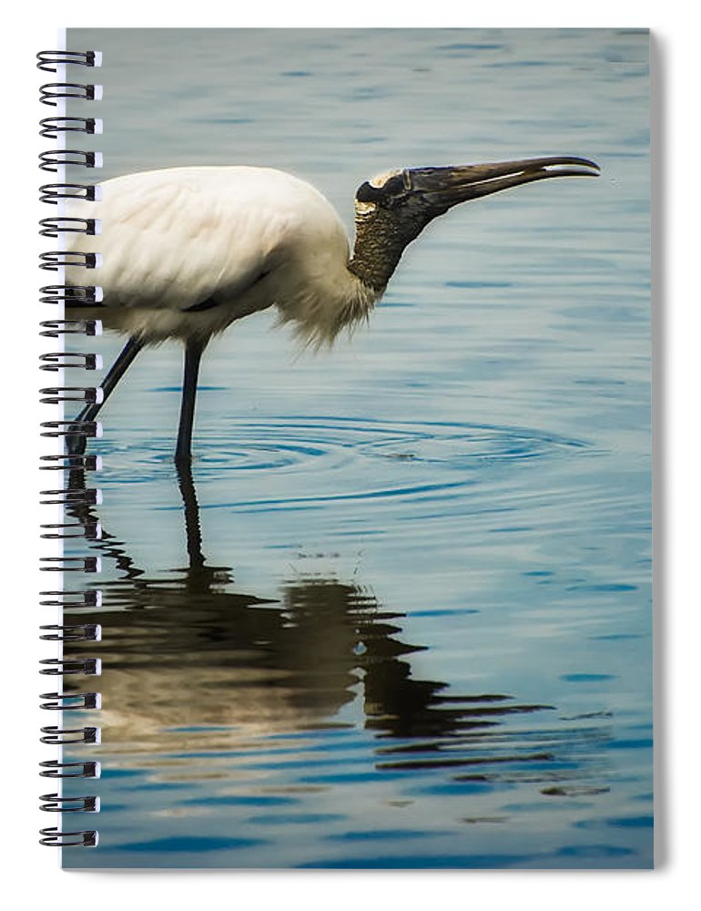 Stork Spiral Notebook featuring the photograph Wood Stork by Rich Leighton
