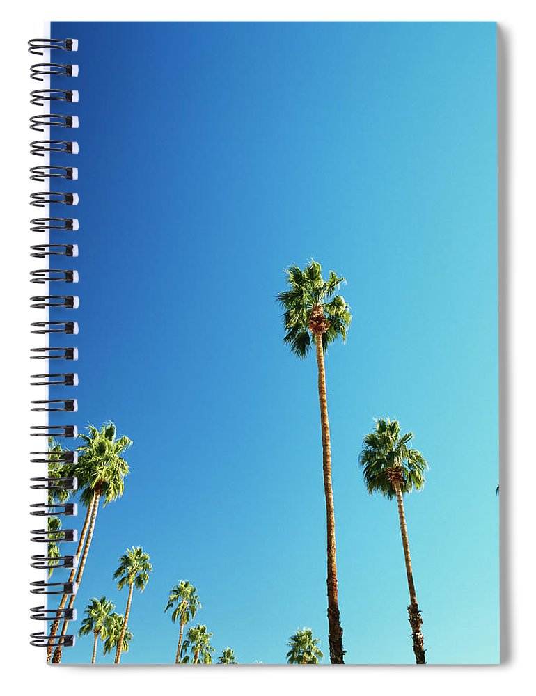 Clear Sky Spiral Notebook featuring the photograph Palm Trees Against Blue Sky by Micha Pawlitzki