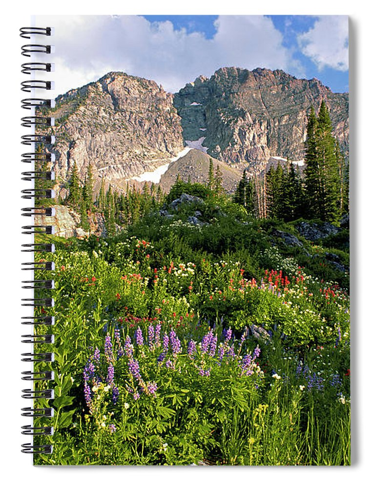 Scenics Spiral Notebook featuring the photograph Landscape Of Little Cottonwood Canyon by Mint Images - David Schultz