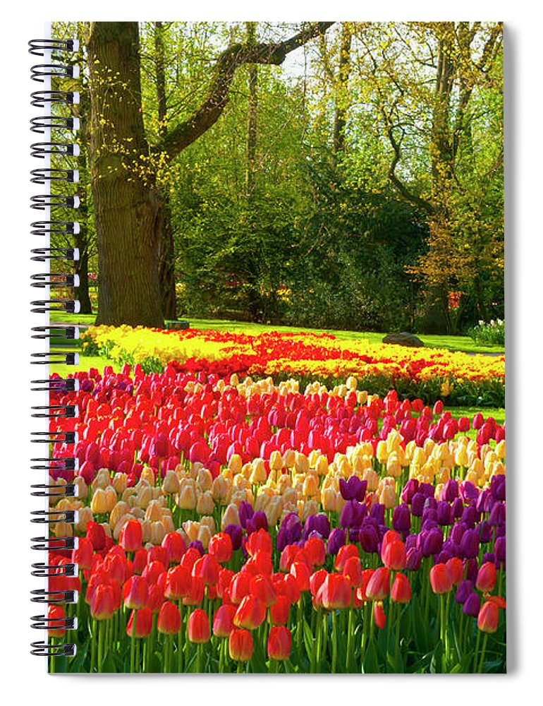 Flowerbed Spiral Notebook featuring the photograph Spring Flowers In A Park by Jacobh