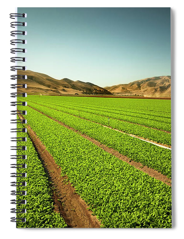 Environmental Conservation Spiral Notebook featuring the photograph Crops Grow On Fertile Farm Land by Pgiam
