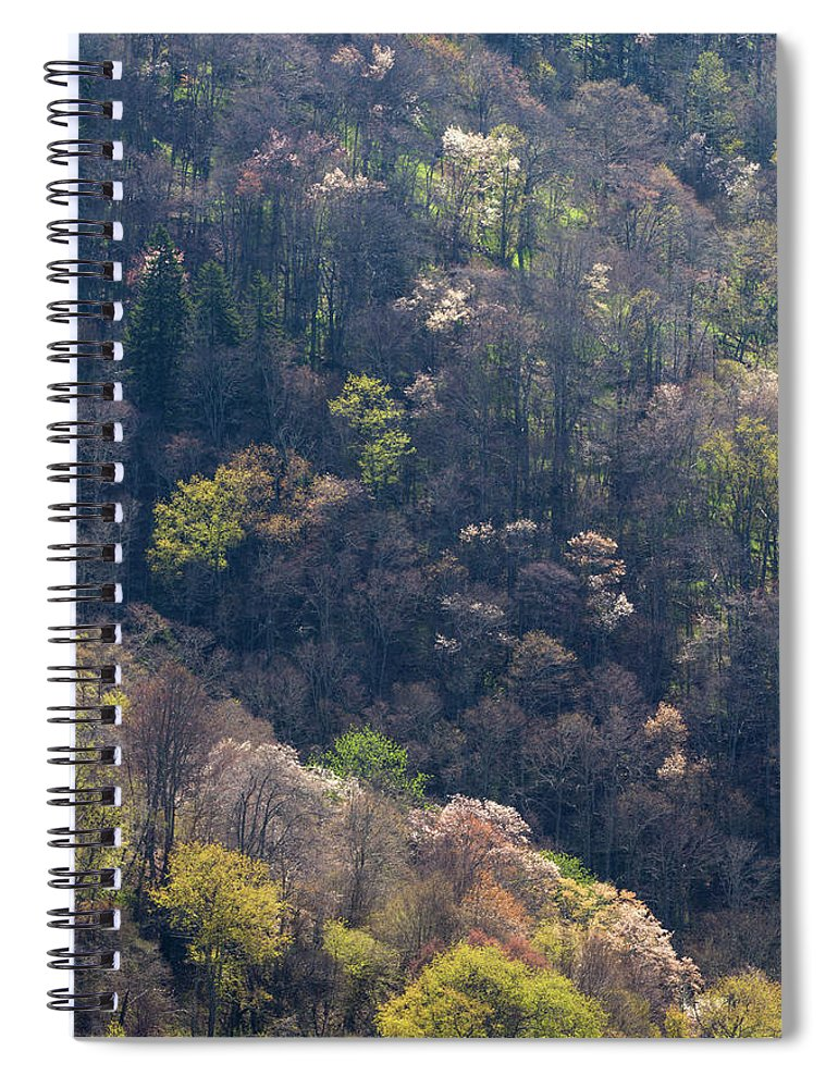 Scenics Spiral Notebook featuring the photograph Early Spring, North Carolina by Jerry Whaley