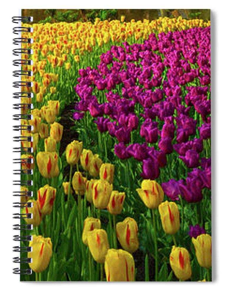 Scenics Spiral Notebook featuring the photograph Spring Flowers In A Park by Jacobh