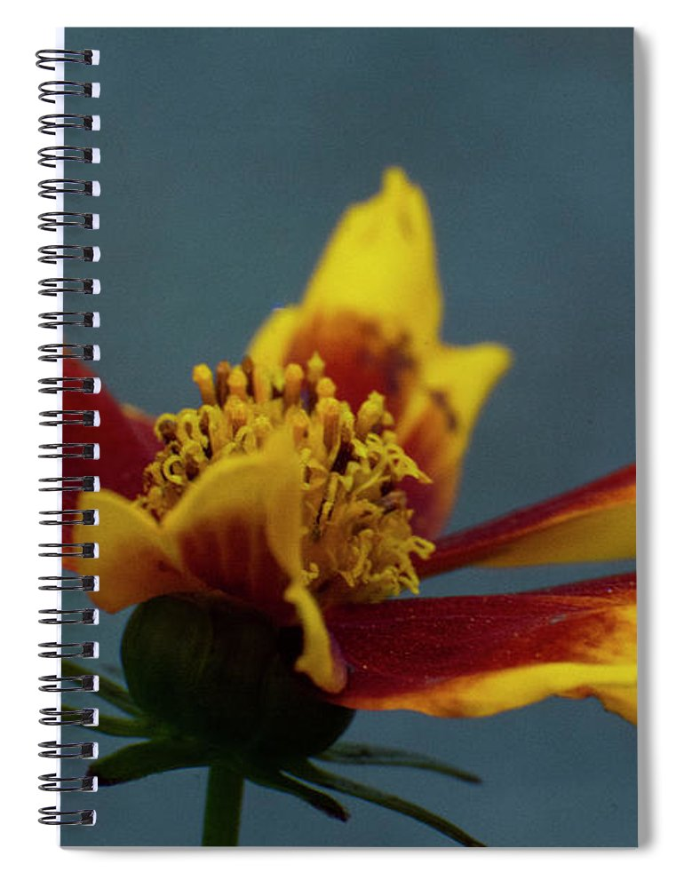 Rudbeckia Spiral Notebook featuring the mixed media Rudbeckia 4 by Smart Aviation
