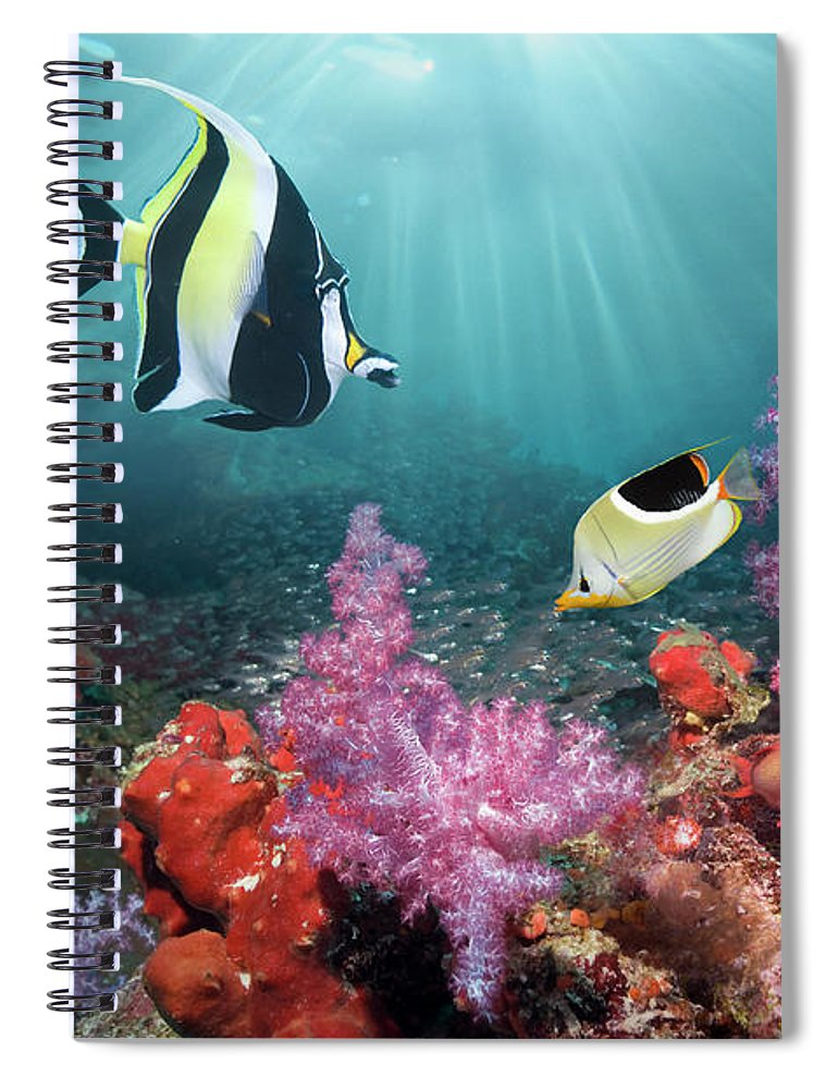 Tranquility Spiral Notebook featuring the photograph Coral Reef Scenery by Georgette Douwma