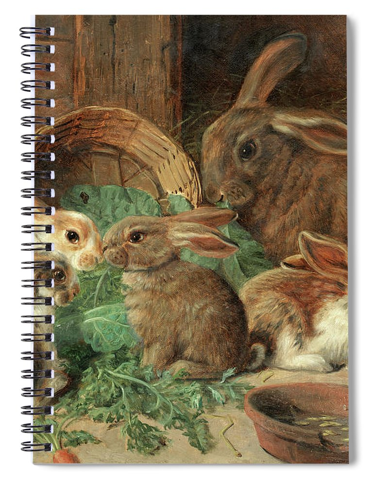 Mother Rabbit Spiral Notebook featuring the painting A Mother Rabbit And Her Young by Alfred Richardson Barber