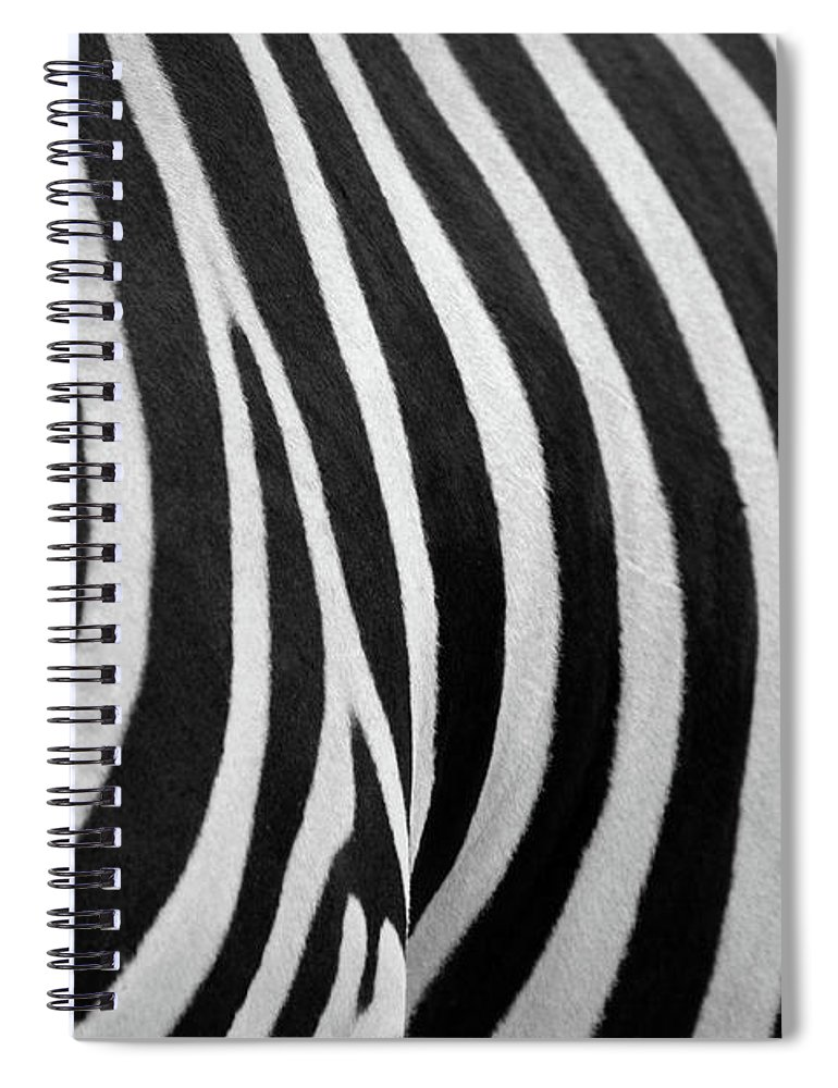 Animal Themes Spiral Notebook featuring the photograph Abstraction Zebra by Rashed Alsikhan