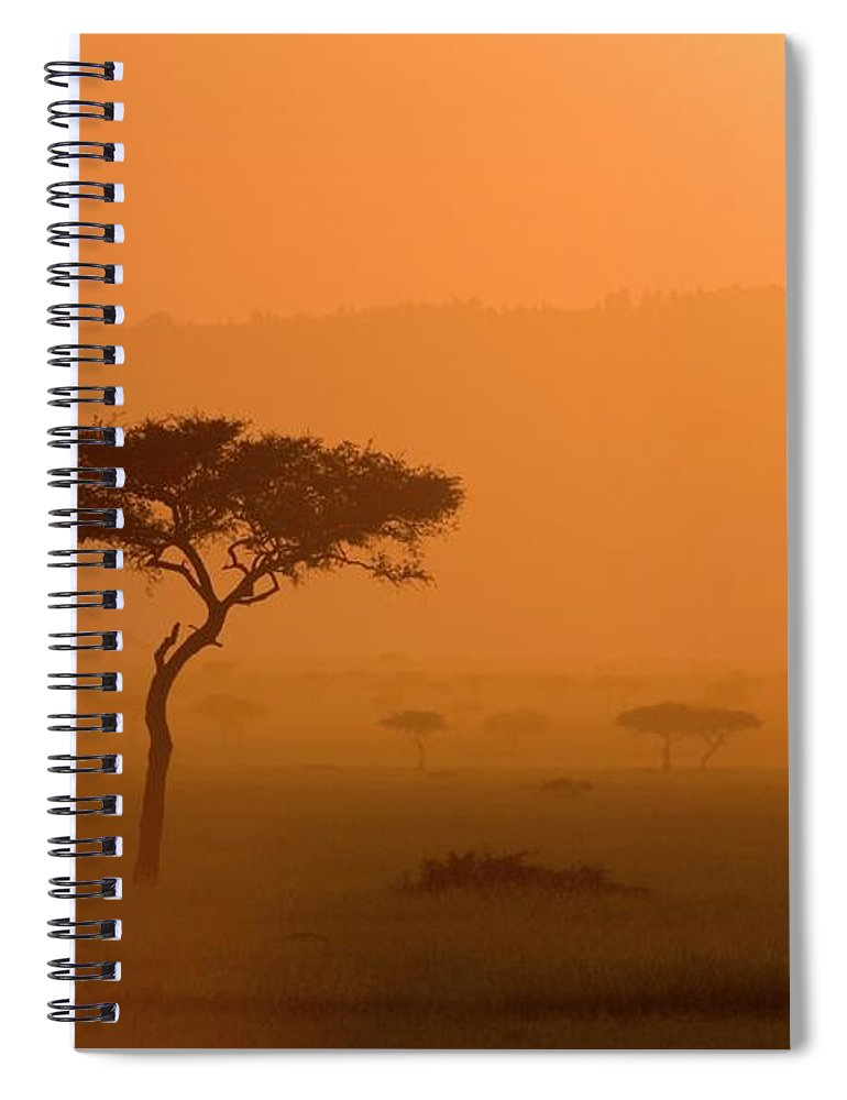 Tranquility Spiral Notebook featuring the photograph Acacia Tree At Sunset, Masai Mara by James Hager / Robertharding