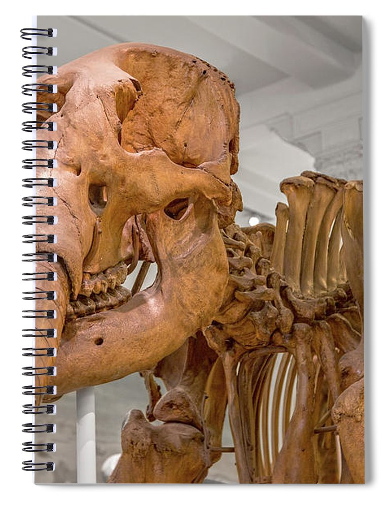 Wooly Spiral Notebook featuring the photograph An Enormous Guy by Betsy Knapp