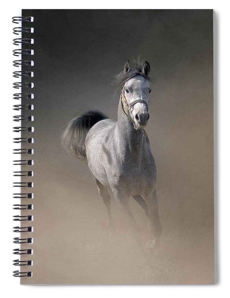 Horse Spiral Notebook featuring the photograph Arabian Horse Running Through Dust by Christiana Stawski