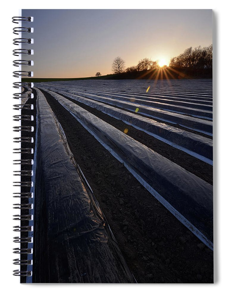 Tranquility Spiral Notebook featuring the photograph Asparagus Field by Andy Brandl