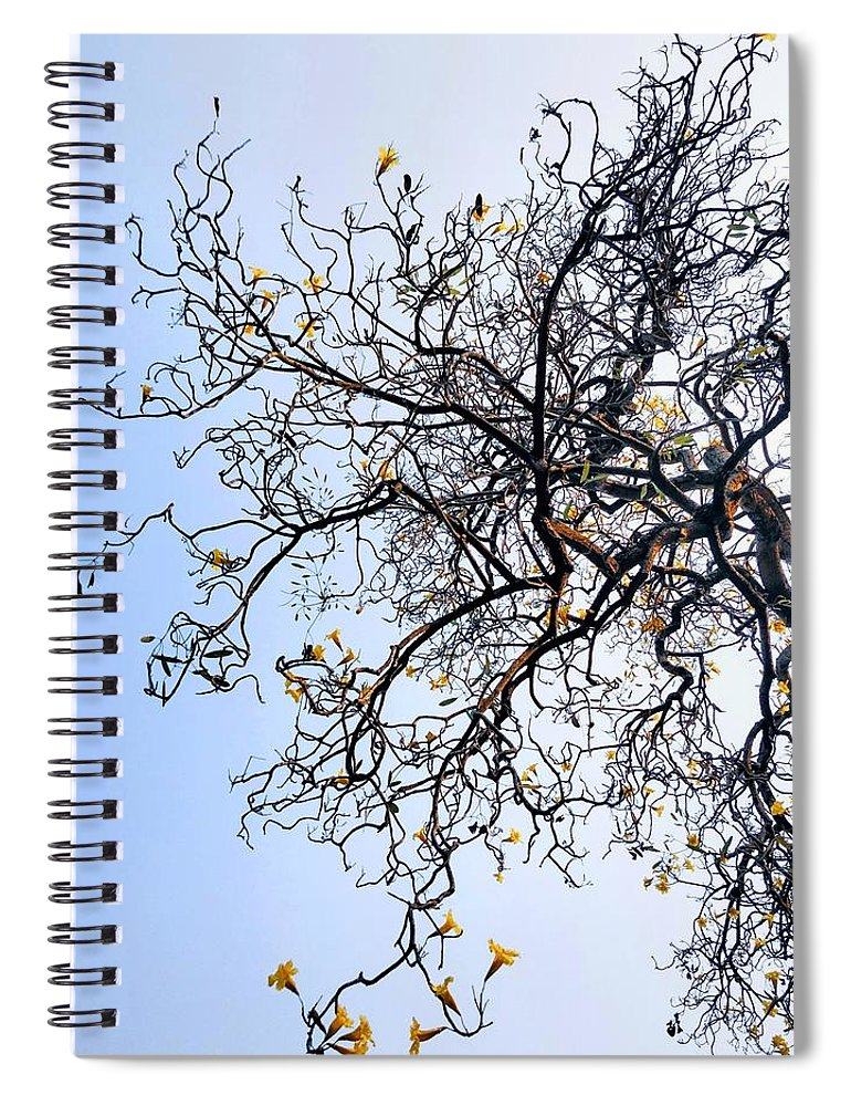 Autumn Spiral Notebook featuring the photograph Autumn by Priya Hazra